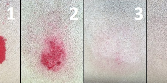 Carpet-stain---Fb-only